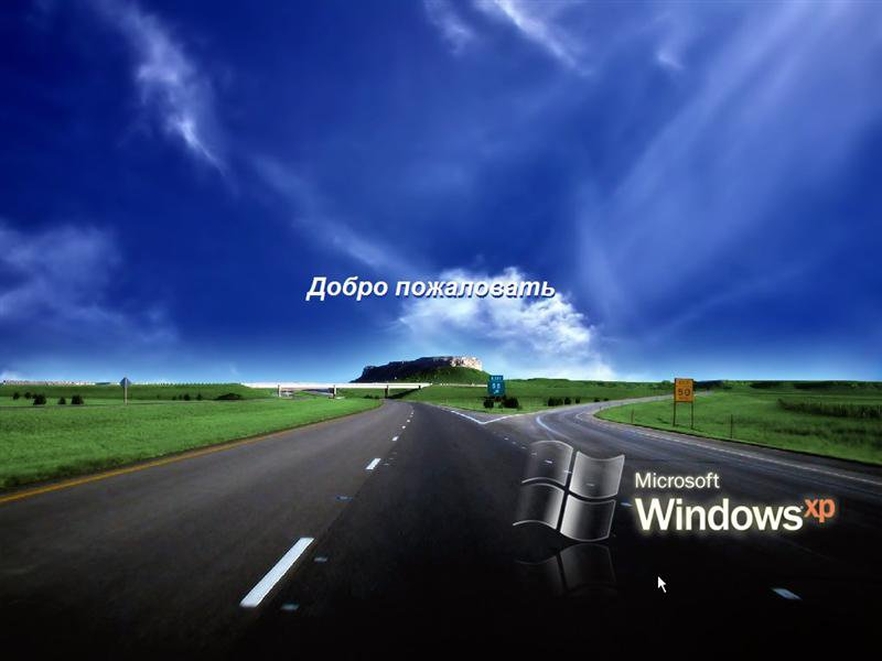 Windows chip 2010